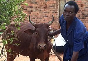 Nabirye-Uganda-web