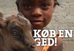 koebenged-web