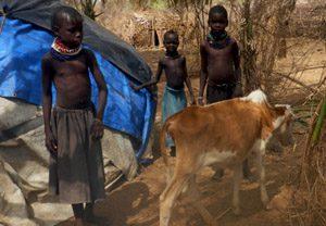 Kenya-sulter-web