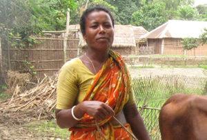 KoBangladeshweb